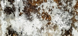 Abstract background, strange pattern, texture, color, texture of wood. Cement surface color Red, Gold, Blue, Purple, Green, Blue, gray, Black and white