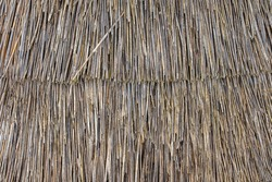 Abstract Background Texture Of A Thatched Roof, Thatch or Thatching