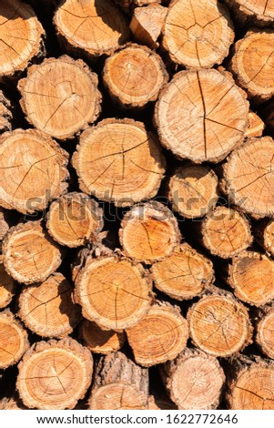 Abstract background with a wooden cut of logs stacked on top of each other