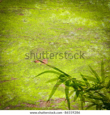 abstract bamboo leaf green background