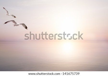 abstract beautiful light  sea summer background