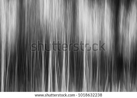 Abstract Black And White Forest Fog Panning Technique BW Blurred Wallpaper Concept