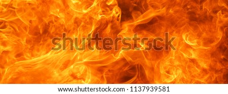 abstract blaze fire flame texture background #1137939581