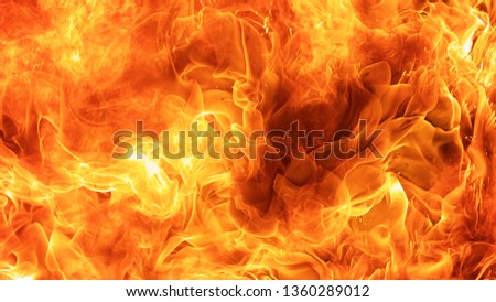abstract blaze fire flame texture background #1360289012