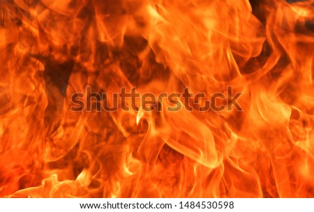 Abstract blaze fire flame texture background. #1484530598