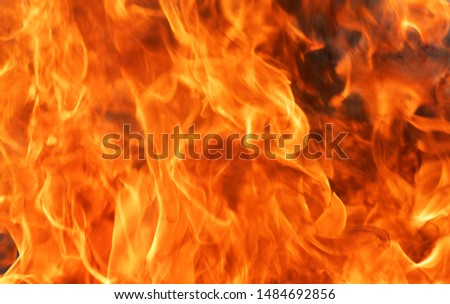 Abstract blaze fire flame texture background. #1484692856