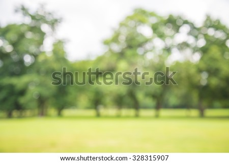 Abstract blur city park bokeh background - Shutterstock ID 328315907