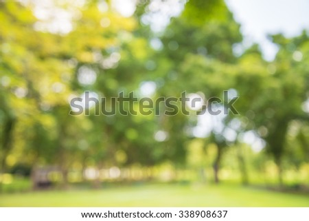 Abstract blur city park bokeh background - Shutterstock ID 338908637