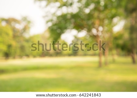 Abstract blur city park bokeh background - Shutterstock ID 642241843