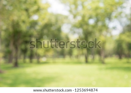 Abstract blur city park bokeh background - Green nature concept