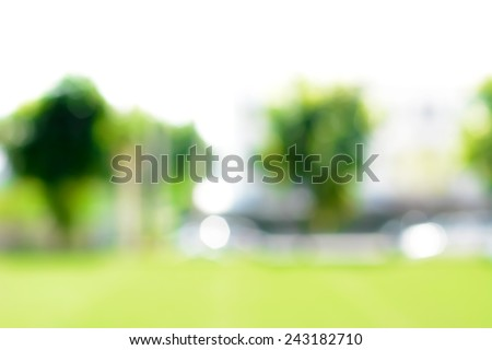 Abstract blur green  background from lawn & trees in the garden