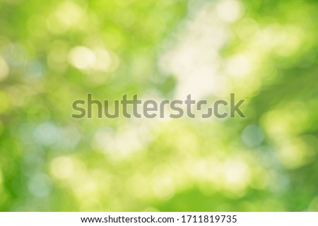 abstract blur green color for background,blurred and defocused effect spring concept for design,nature view of blurred greenery background in garden using as background natural,fresh wallpaper concept