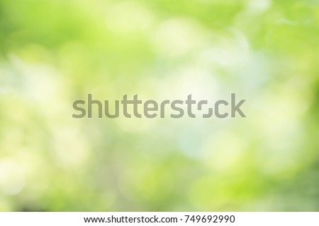 abstract blur green color for background,blurred and defocused effect spring concept for design - Shutterstock ID 749692990