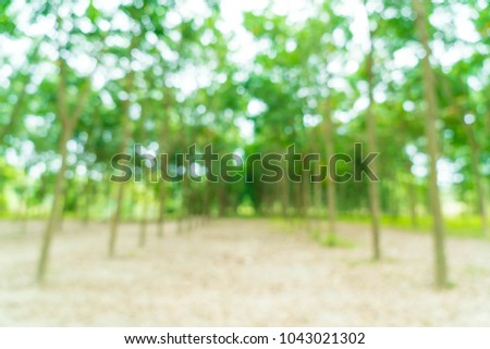 abstract blur walkway with tree for background