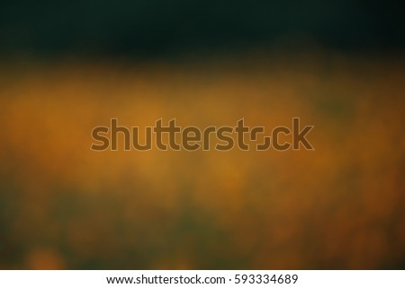 Abstract blurred bokeh