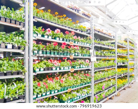 Abstract blurred hardware store shelves with garden goods as background