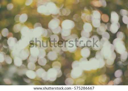 Abstract blurred natural background, Defocused light of nature glitter for design elements #575286667