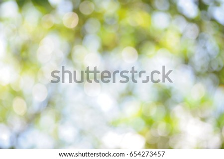 Abstract blurred natural green background, Defocused light of foliage for design elements #654273457