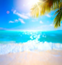 abstract blurred summertime vacation background; sunny tropical beach with palm tree and sea waves