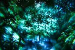Abstract blurry psychedelic background.. Lomography magic landscape. Trees against the sky. Soft focus.