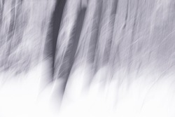 Abstract blurry snowy tree lines in monochrome, abstract motion blur background