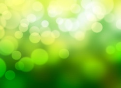 Abstract bokeh background. Green natural blurred backdrop.