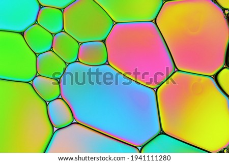 Abstract Bright Colored Background Closeup of Oil Drops in Water. Creative Macro Photo of Liquid Surface with Blue, Green, Pink, Yellow Asymmetric Bubbles. Colorful Design of Structural Watery Surface Foto stock ©