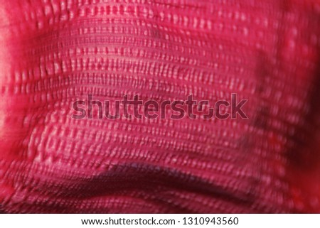 Abstract burgundy background. Natural texture of the inside of the bud of a banana flower.
