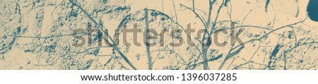 abstract celadon and beige grunge texture on background with copy space or image for design. #1396037285