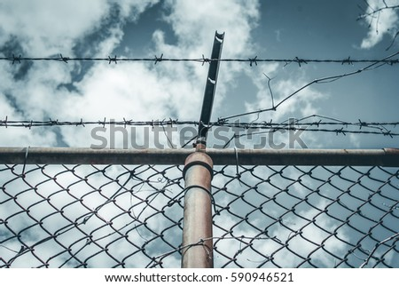 Abstract chain link fence with barbed wire. Broken chain steel fence with barbed wire and branches. Branches and roots on steel gate frame. Industrial art and design. Abstract sky colorful background. #590946521