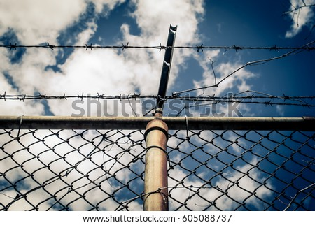 Abstract chain link fence with barbed wire. Broken chain steel fence with barbed wire and branches. Branches and roots on steel gate frame. Industrial art and design. Abstract sky colorful background. #605088737