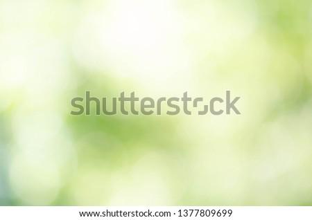 Abstract circular green bokeh background #1377809699
