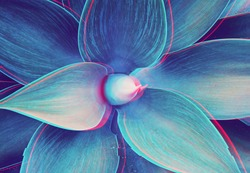 Abstract close up of Agave plant with glitched out effect floral turquoise pattern, neon light, digital signal