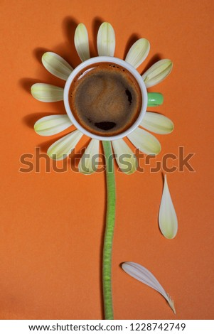 Abstract Coffee Cup And Petals #1228742749