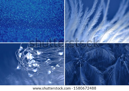 Abstract collage background lights garland, feather, palm tree, glitter sparkles defocus bokeh Winter festive close up macro concept inspired by classic blue color of the year 2020 Set with copy space #1580672488