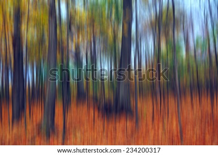 Abstract colorful enchanted forest, streak effect, fall season
