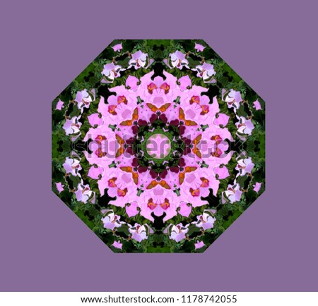 Abstract colorful octagonal knot. the figure of the modified image of cosmos flowers. Eight-sided ornament in natural colors of cosmea flowers on a light purple background.