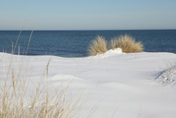Abstract composition of a snow covered beach