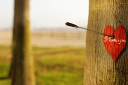 Abstract concept photograph of an arrow piercing a red heart on tree with phrase