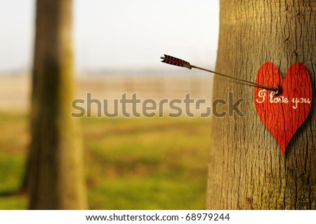 """Abstract concept photograph of an arrow piercing a red heart on tree with phrase """"I Love You"""""""