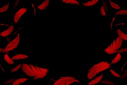 Abstract dark red feathers frame on black background