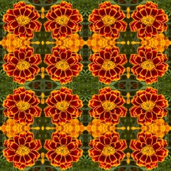 Abstract decorative flower background. Seamless colorful pattern.