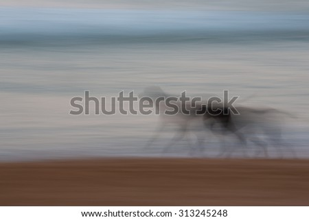 Abstract dog running with ocean and sky background with blurred panning motion causing soft feel