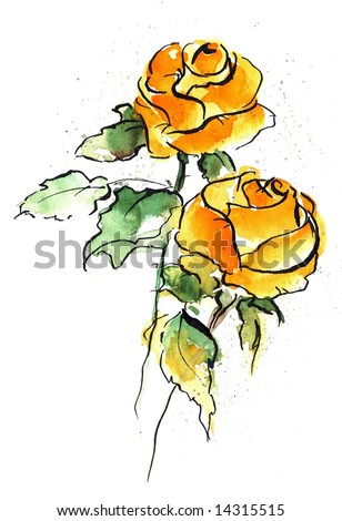 Abstract floral watercolor illustration with design of two yellow rose flowers on white. Art is painted and created by photographer