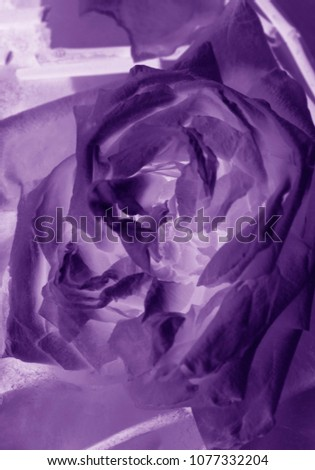 Abstract flower rose #1077332204