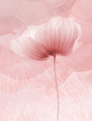 abstract flowers background for decoration on pink background