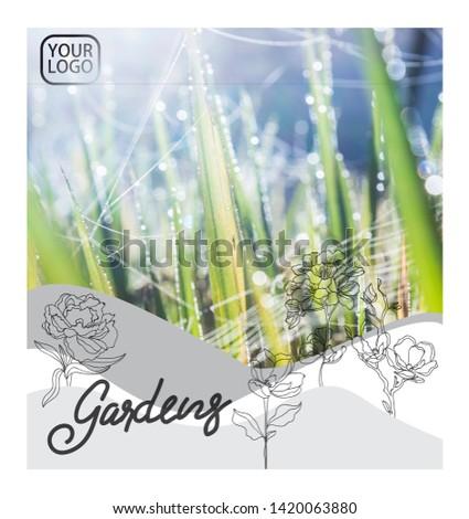 Abstract flyer business brochure template flower3 #1420063880