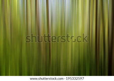 abstract  forest ,abstract nature forest,artistic background