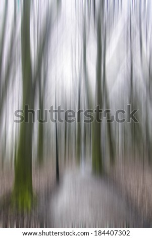 abstract forest in motion blur
