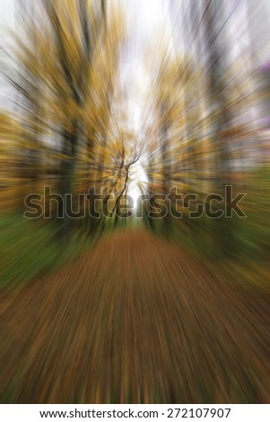 abstract forest in motion blur ,abstract colorful background